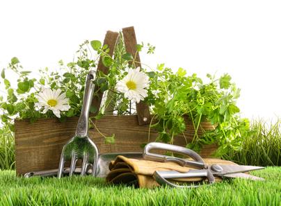 Tous travaux du jardin