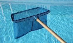 Entretien de la piscine